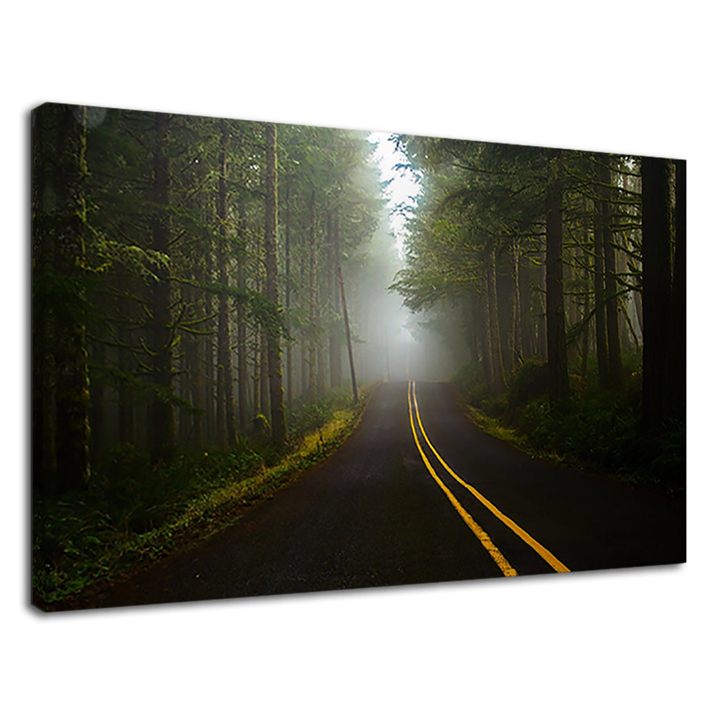 Yellow Forest Road Misty Landscape Autumn Track