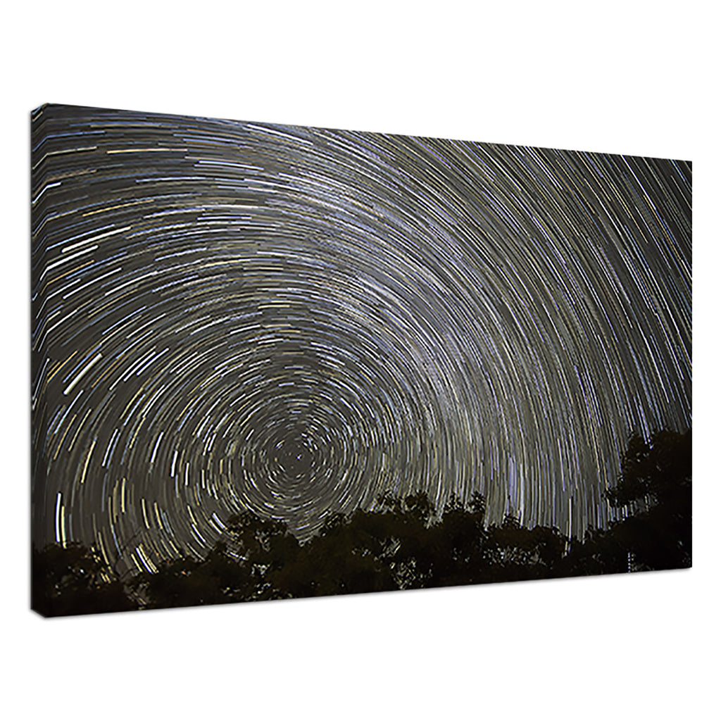 Star Trails Black Abstract Treetops Silhouette Sky