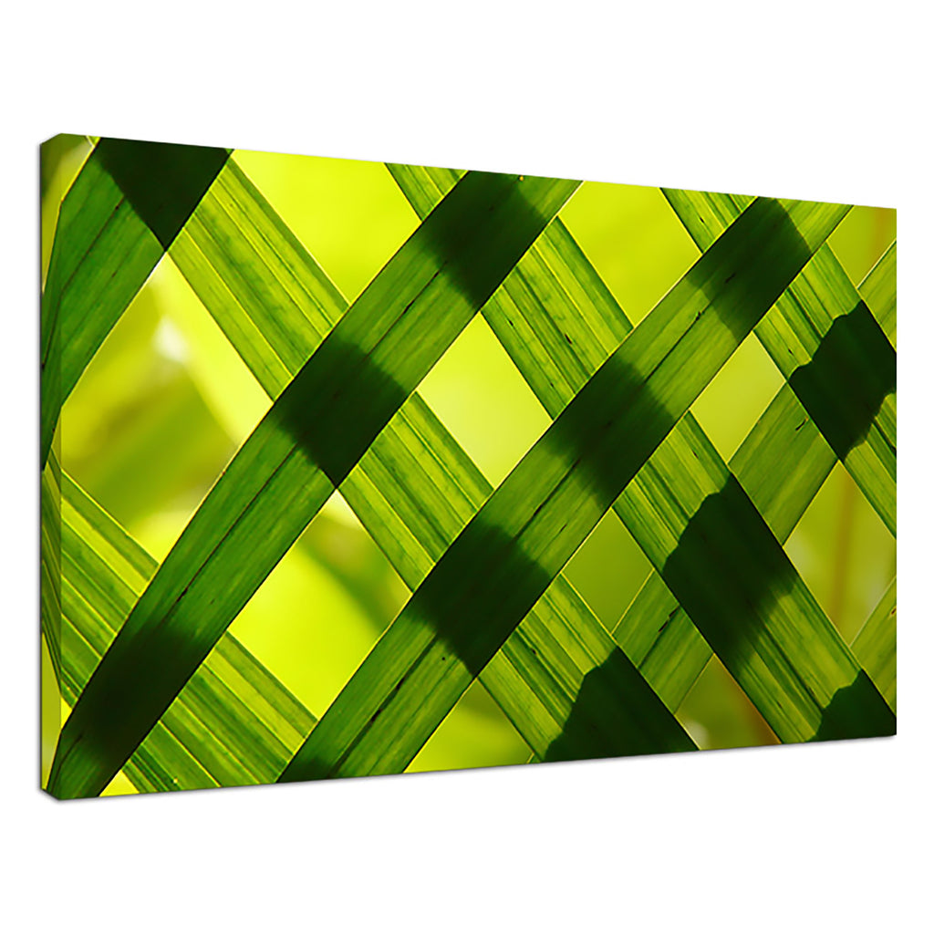 Woven Leaves Yellow Abstract Crisscross Transparen