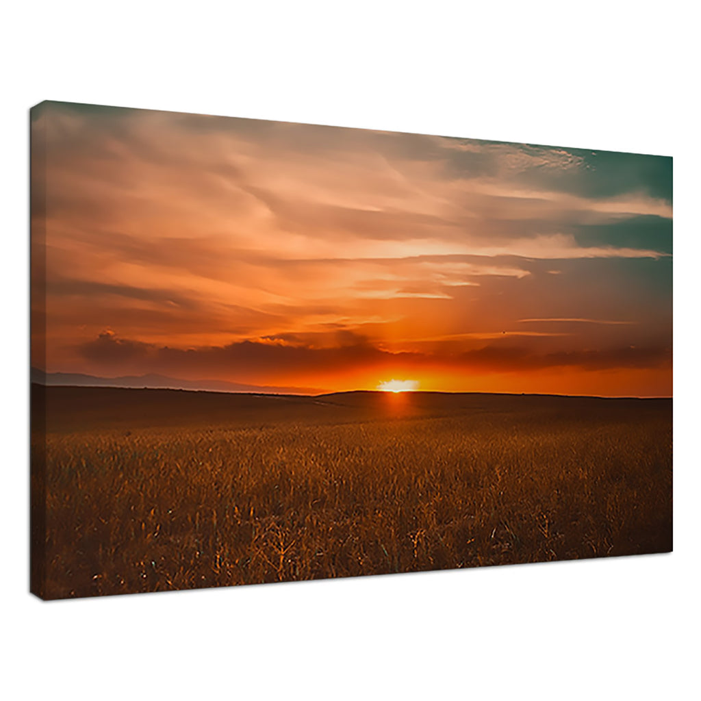 Golden Fields Orange Sunset Sky Horizon Field Sun