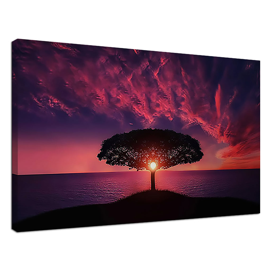 Tree Of Light Pink Sunset Tree Sunset Sunrise