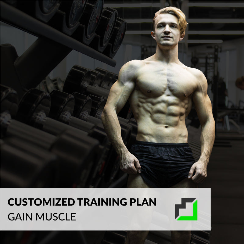 Customized Training Plan
