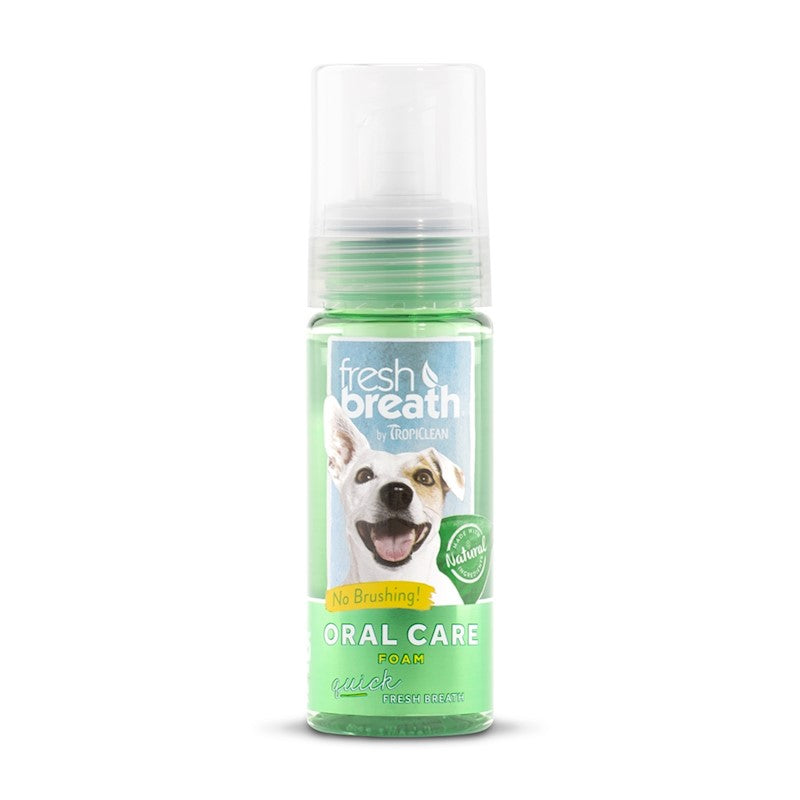 FRESH BREATHMINT FOAM 133ML