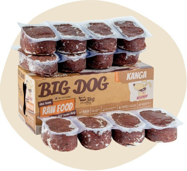 Big Dog Barf Kangaroo 12 X 250g