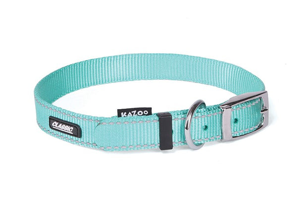 CLASSIC-NYLON COLLAR-MINT -650X25MM-XL