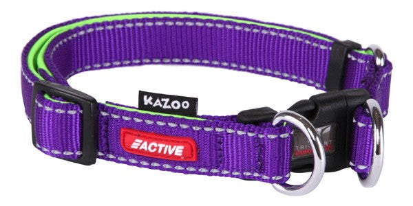 ACTIVE-ADJ.NYLON COLLAR-PURP/LME-20MM-L