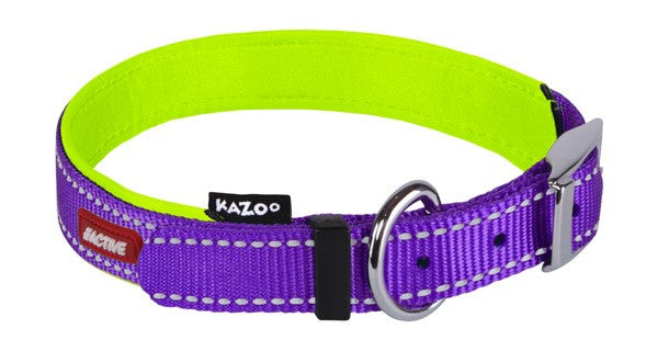 ACTIVE-NYLON COLLAR-PURP/LME-650X25MM-XL