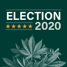 2020 Election: Making Strides in the Marijuana Industry