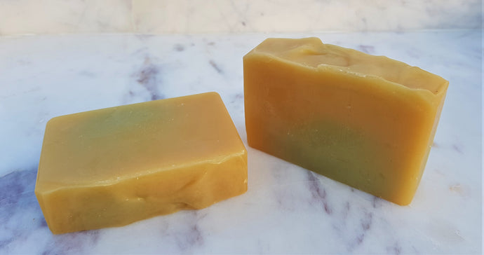 Green Tea + Lemongrass Dog Shampoo Bar