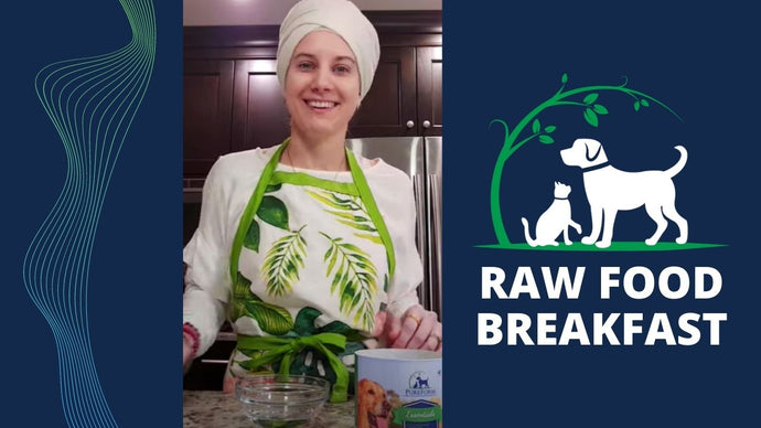Raw Feeding: Breakfast Routine for Cats & Dogs