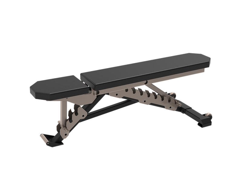 Multifunctional Bench - RAPTOR