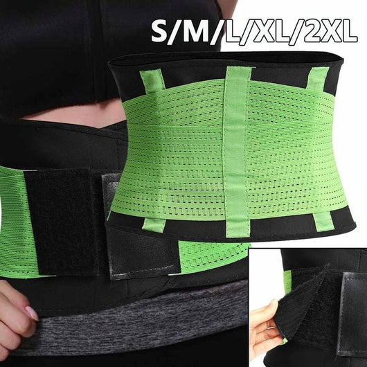 FLA Spine Support Belt