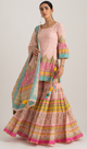 Sky in Pink Sharara Set