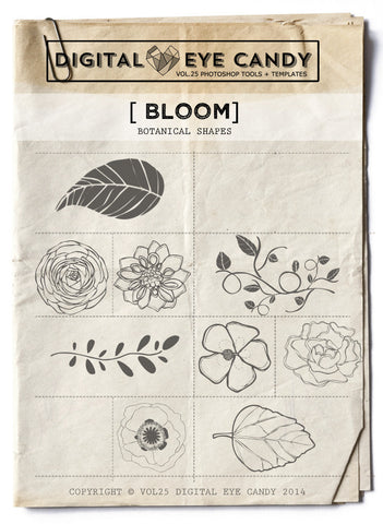 Bloom Overlay Set