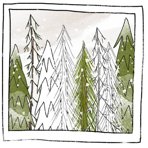 ILLUSTRATIONS- PINE AND SNOW- FREE STYLE