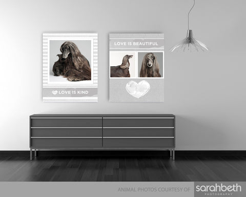 4 STORYBOARD TEMPLATES - LOVE IS FOR PETS AND PEOPLE 16X20
