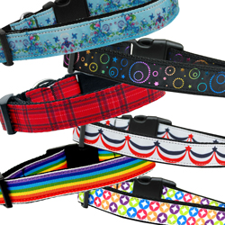 Nifty Nylon Collars