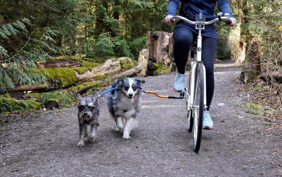 Dog Coupler For Biking & Walking (Bike Tow Leash)