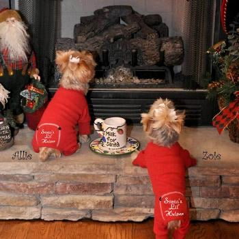 2 dogs at fireplace in red pajamas that say santas lil helper on rear end