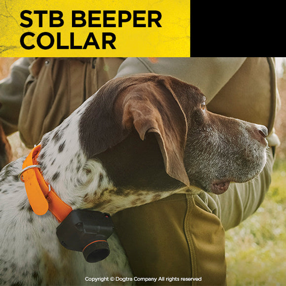STB BEEPER COLLAR by Dogtra