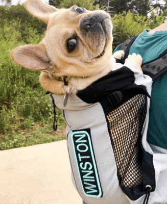 K9 Sport Sack Bag AIR - [pups_path]