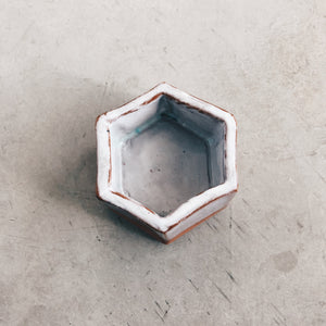Modern Hexagon Terra Cotta and White Ceramic Planter