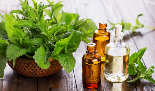 5 Everyday Benefits of Using Patchouli Essential Oil