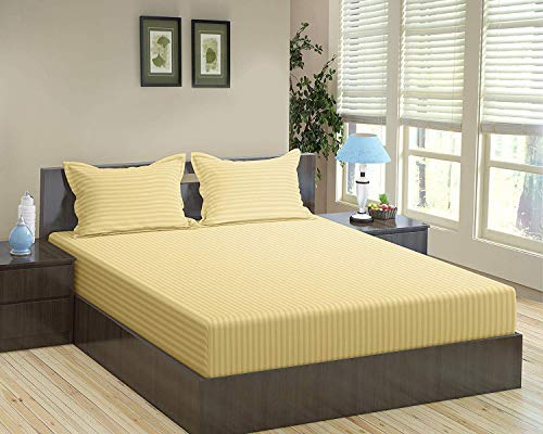 Trance Home Linen Cotton 200 TC Fitted Bedsheet King Sizes with 2 Pillow Cover