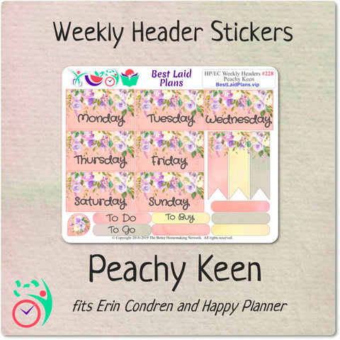 Image of Happy Planner Classic Vertical Weekly Kit Peachy Keen