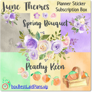 Plans That Stick - Functional Planner Sticker Box