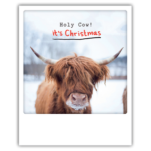 Postkarte holy cow it's christmas