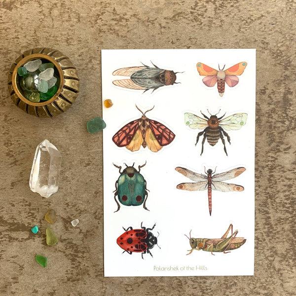 Bug Sticker Sheet - Gift