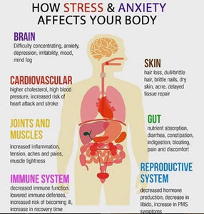 HOW STRESS EFFECTS YOUR BODY