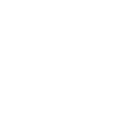 XALTED Marketing