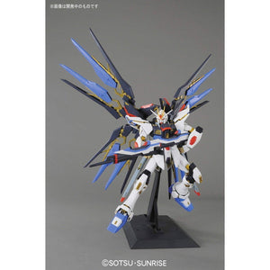 1/60 PERFECT GRADE STRIKE FREEDOM GUNDAM PG 1/60 ZGMF-X20A ストライクフリーダムガンダム