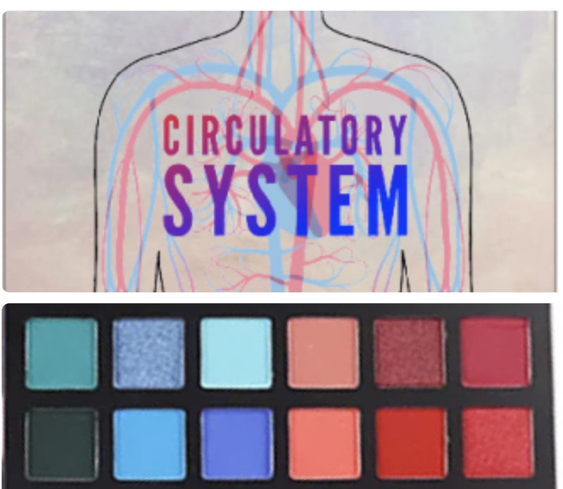 Circulatory System Eyeshadow Palette Pre Order - The-Lab-Cosmetics