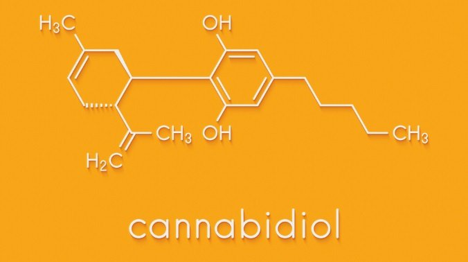 About Cannabinoids