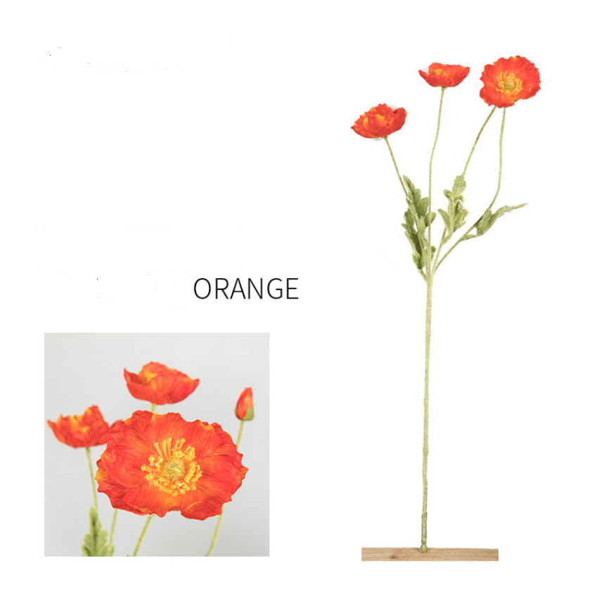 Four Beauties Flocking Poppies - Tall 60cm - rosemorning