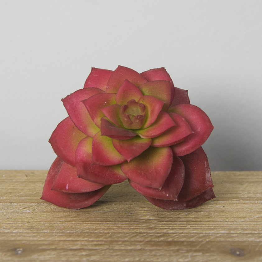 Real Touch Artificial Succulent - Tall 8cm - rosemorning