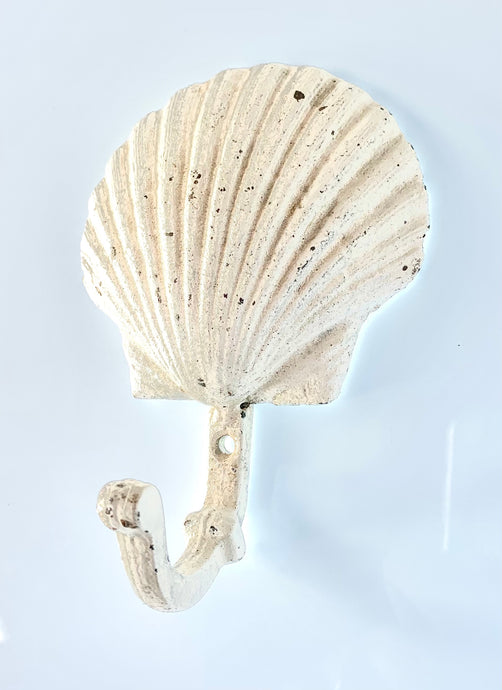 rustic scallop shell wall hook