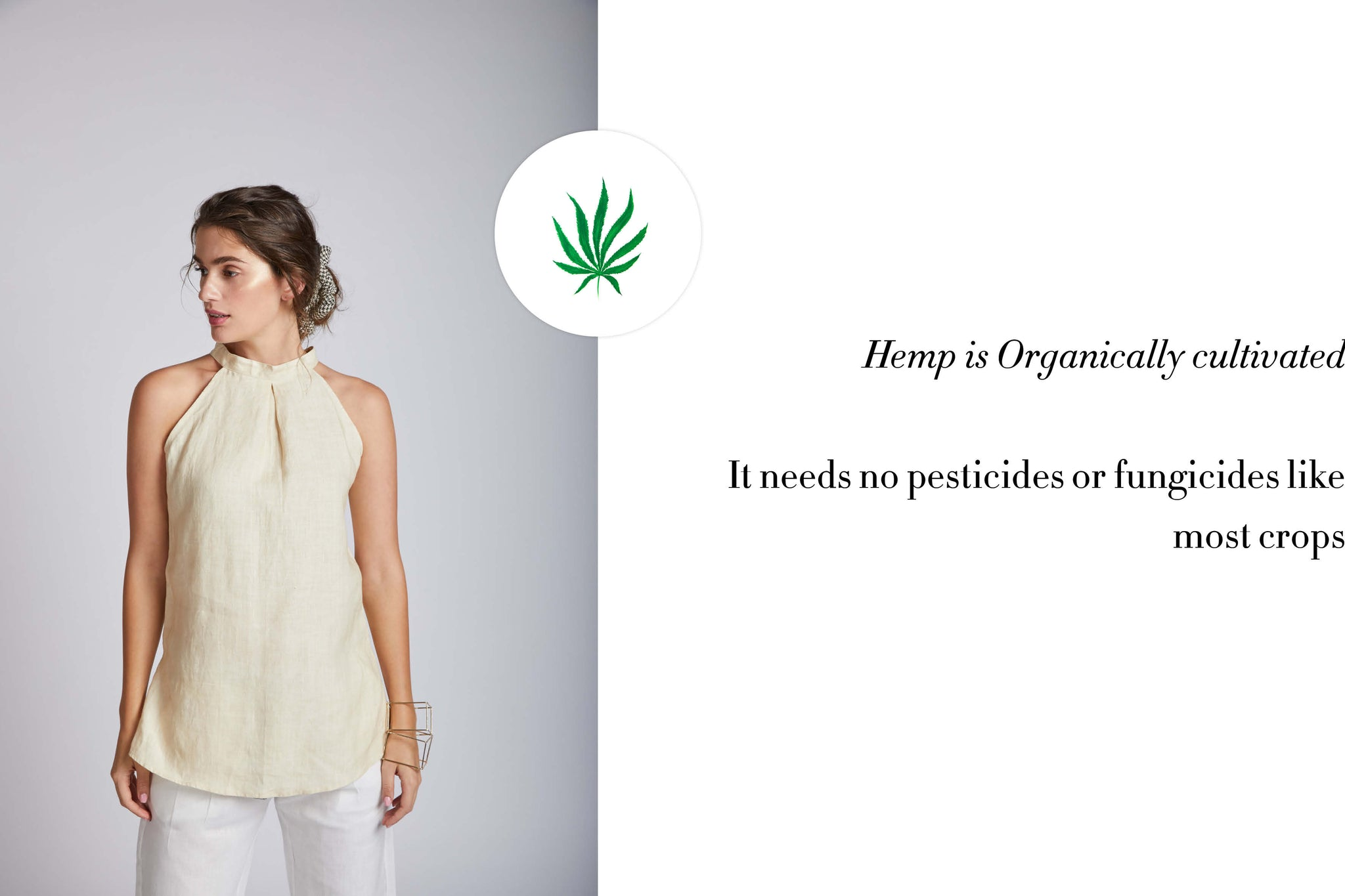 Hemp is organically cultivated . It needs no pesticides or fungicides like most crops