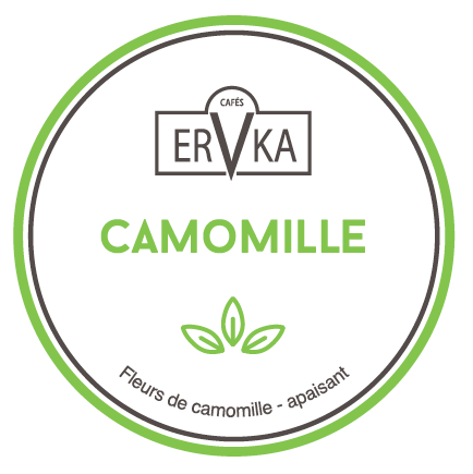 Camomille | Infusion