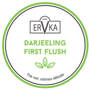 Darjeeling first flush | Thé noir