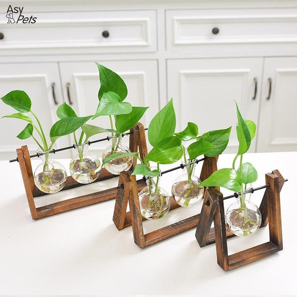 AsyPets Creative Plant Glass Hydroponic Container Terrarium Desk Decor with Wood Stand Flower Pot Home Decoration-25