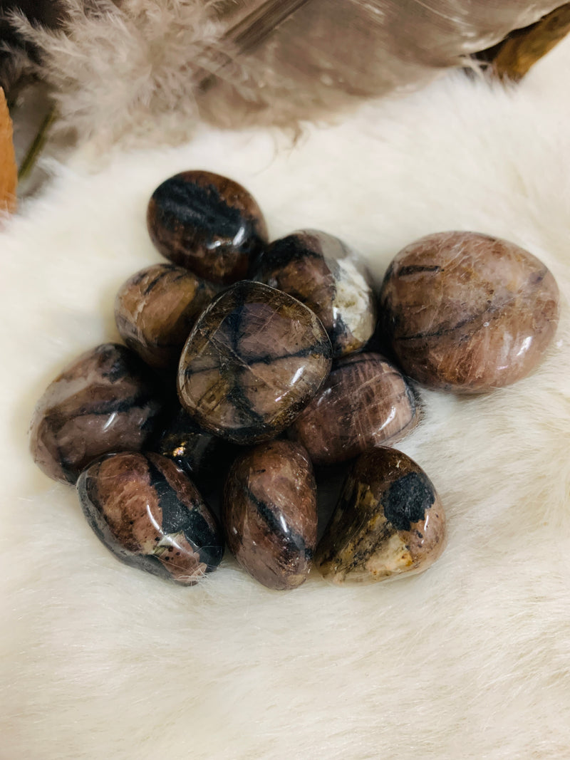 chiastolite, crystals, tourmalinated quartz, crystals, witch store, metaphysical store, ghidrahs, ghidrah's, adrian, lenawee, michigan, ypsilanti, ann arbor, jackson, saline, stones, crystal healing, witch, witchcraft, magic