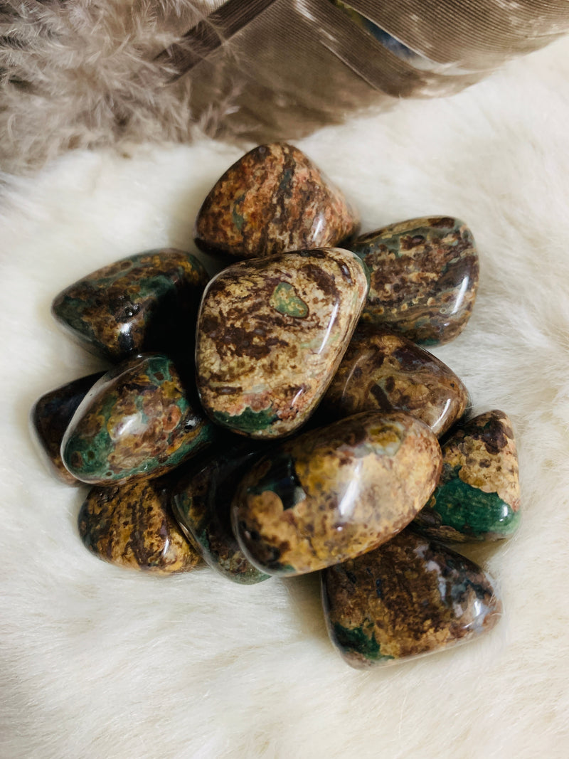 green leopard jasper, crystals, tourmalinated quartz, crystals, witch store, metaphysical store, ghidrahs, ghidrah's, adrian, lenawee, michigan, ypsilanti, ann arbor, jackson, saline, stones, crystal healing, witch, witchcraft, magic
