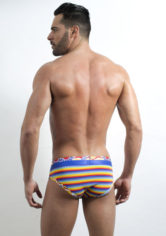 Discover DI90688 Acapulco Brief