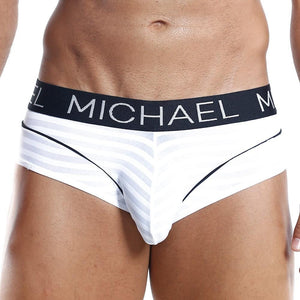 Michael MLH010 Brief