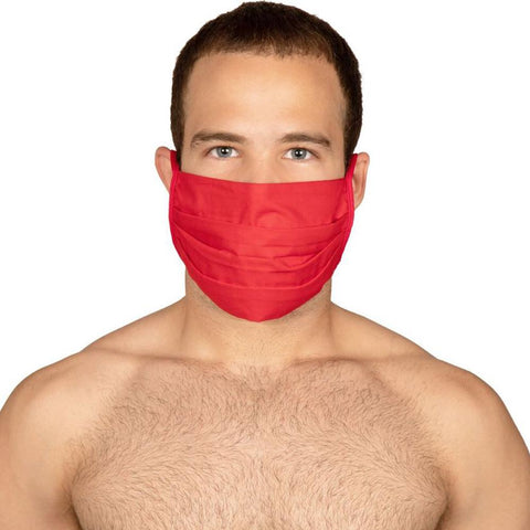 Mask Protect 3305 Cotton Mask 4 Pack