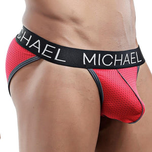 Michael MLH016 Brief
